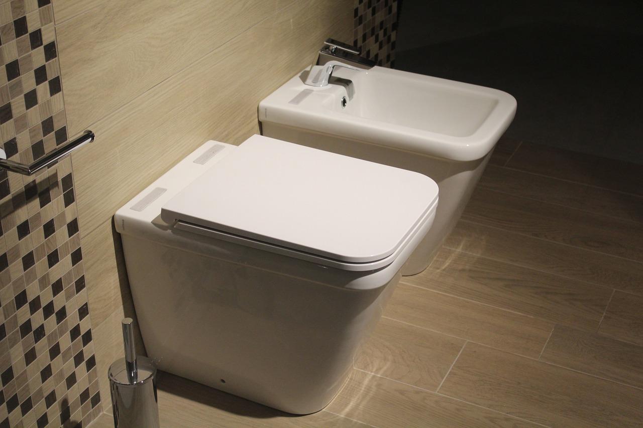 Pourquoi remplacer ses WC au lieu de les réparer ?